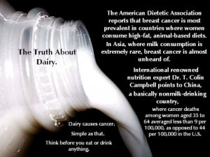 milk-causes-linked-breast-cancer