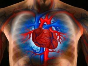 Heart-Disease-01